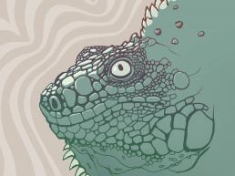 Mystic Lizard